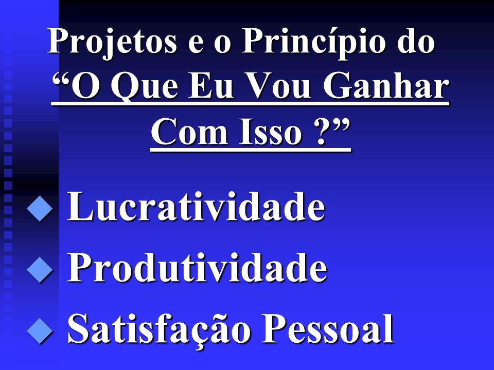 Projetos e o Princípio do O Que Eu Vou Ganhar Com Isso ? u Lucratividade u Produtividade u Satisfação Pessoal