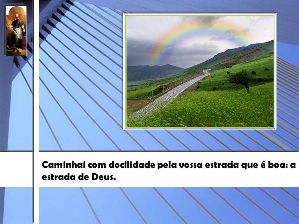 Caminhai com docilidade pela vossa estrada que é boa: a estrada de Deus.