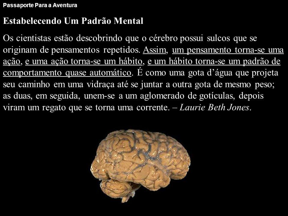 Passaporte Para a Aventura Estabelecendo Um Padrão Mental Os cientistas estão descobrindo que o cérebro possui sulcos que se originam de pensamentos r