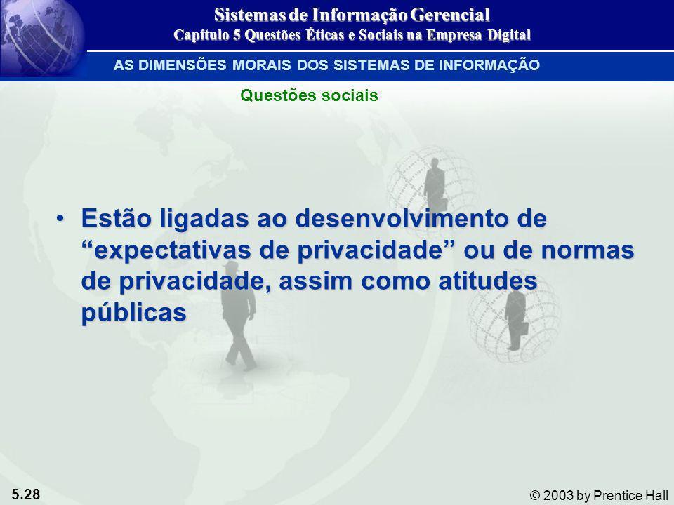 5.28 © 2003 by Prentice Hall Estão ligadas ao desenvolvimento de expectativas de privacidade ou de normas de privacidade, assim como atitudes públicas