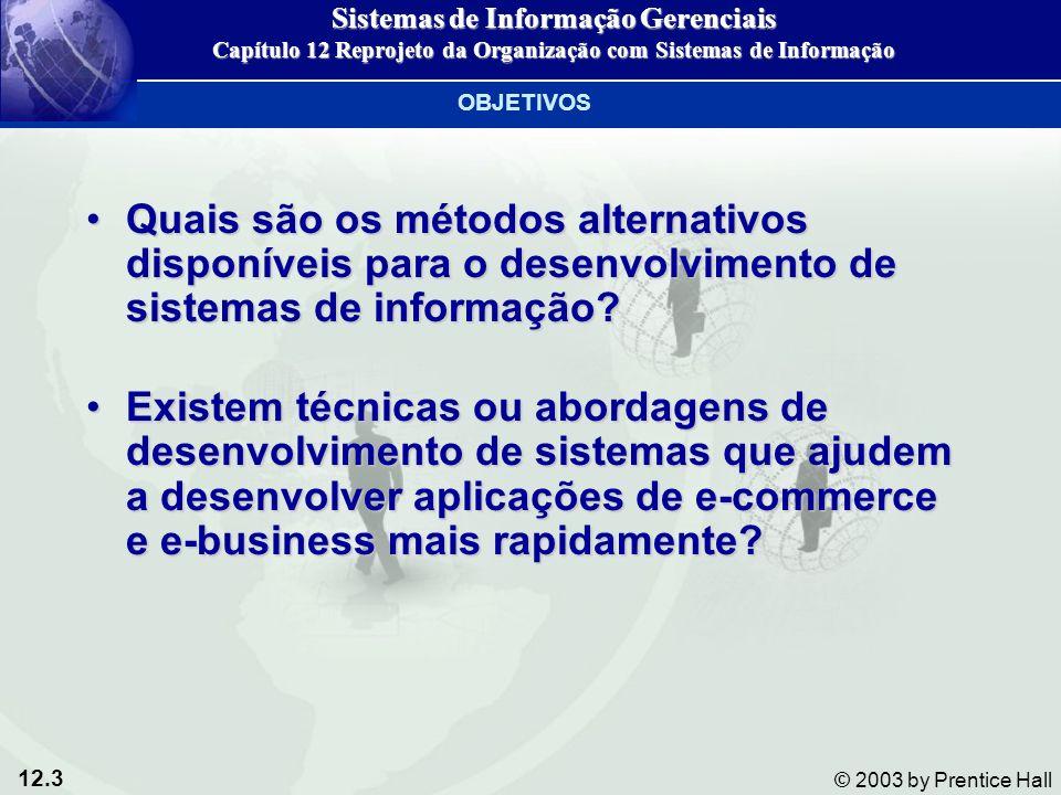 12.3 © 2003 by Prentice Hall Quais são os métodos alternativos disponíveis para o desenvolvimento de sistemas de informação?Quais são os métodos alter