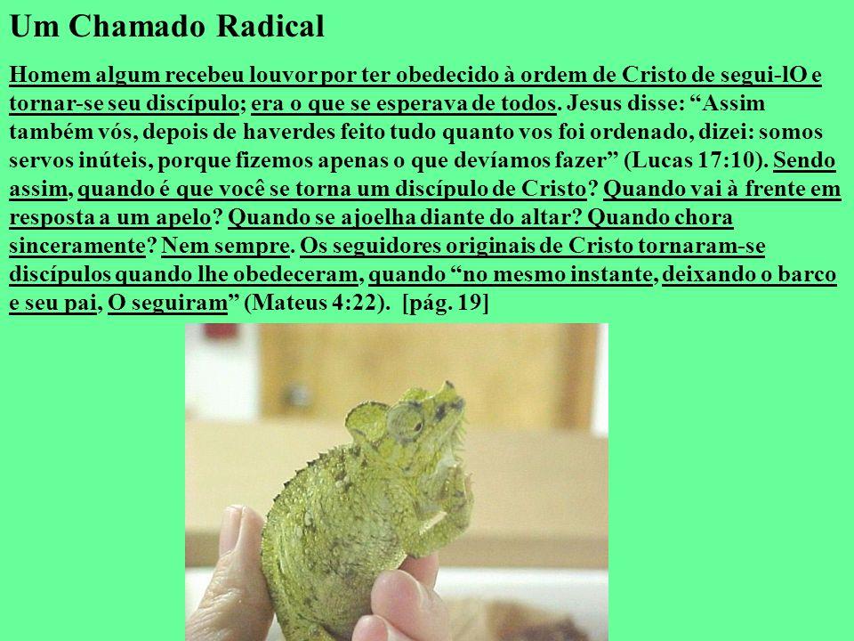 Um Chamado Radical Homem algum recebeu louvor por ter obedecido à ordem de Cristo de segui-lO e tornar-se seu discípulo; era o que se esperava de todo