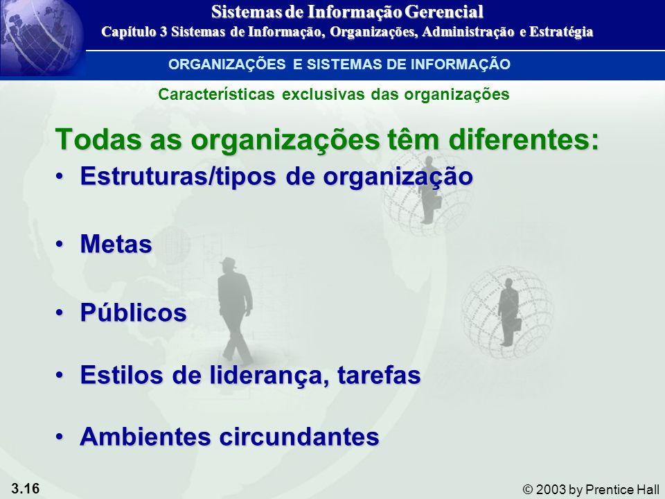 3.16 © 2003 by Prentice Hall Todas as organizações têm diferentes: Estruturas/tipos de organizaçãoEstruturas/tipos de organização MetasMetas PúblicosP