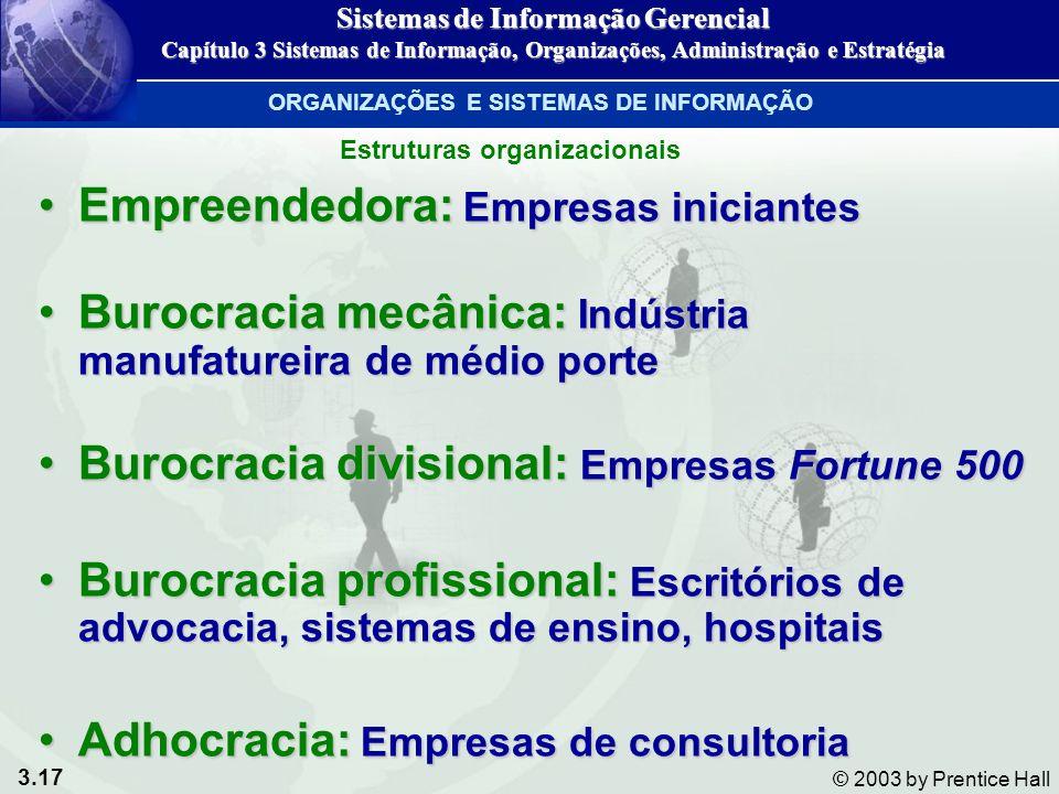 3.17 © 2003 by Prentice Hall Empreendedora: Empresas iniciantesEmpreendedora: Empresas iniciantes Burocracia mecânica: Indústria manufatureira de médi