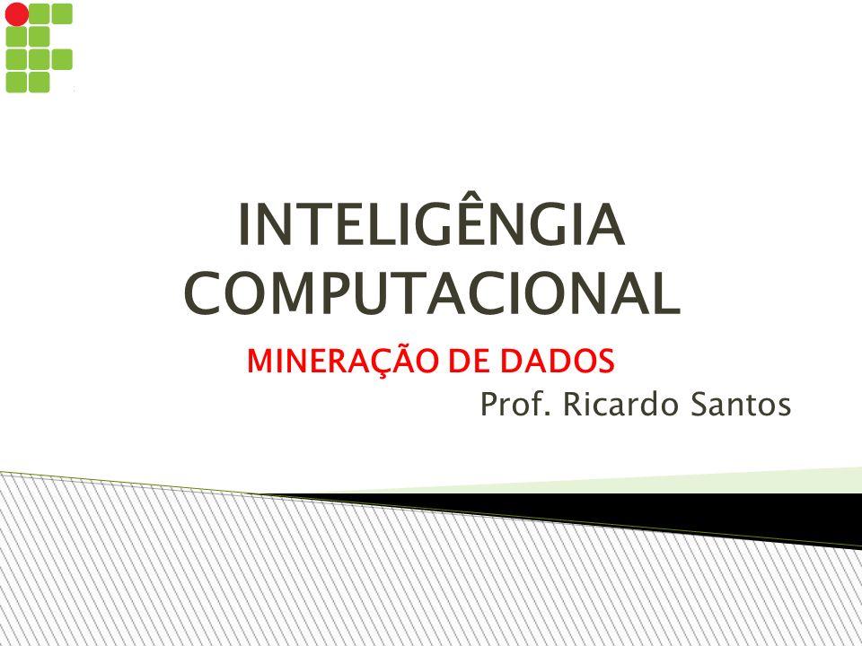 INTELIGÊNGIA COMPUTACIONAL MINERAÇÃO DE DADOS Prof. Ricardo Santos