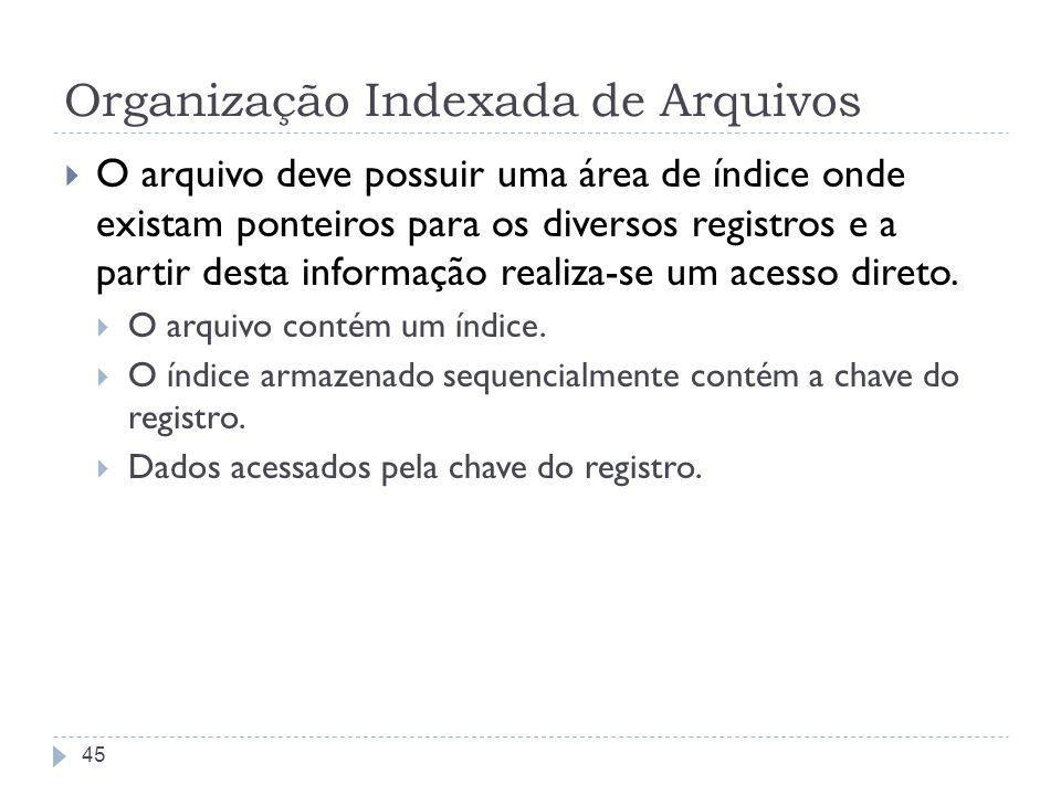 Organização Indexada de Arquivos O arquivo deve possuir uma área de índice onde existam ponteiros para os diversos registros e a partir desta informaç