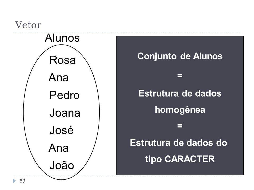 69 Vetor Rosa Ana Pedro Joana José Ana João Alunos Conjunto de Alunos = Estrutura de dados homogênea = Estrutura de dados do tipo CARACTER