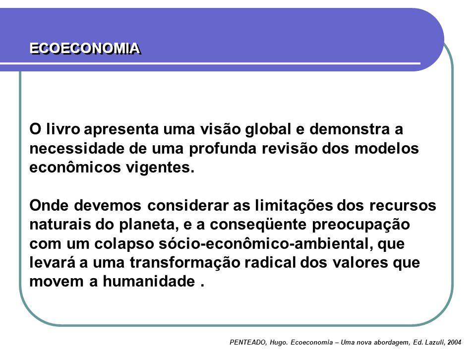 O livro apresenta uma visão global e demonstra a necessidade de uma profunda revisão dos modelos econômicos vigentes.