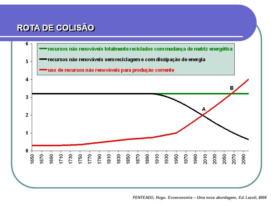 ROTA DE COLISÃO PENTEADO, Hugo. Ecoeconomia – Uma nova abordagem, Ed. Lazuli, 2004