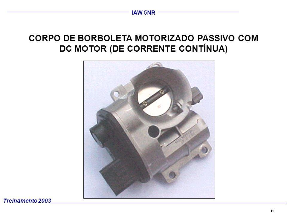 6 Treinamento 2003 IAW 5NR CORPO DE BORBOLETA MOTORIZADO PASSIVO COM DC MOTOR (DE CORRENTE CONTÍNUA)
