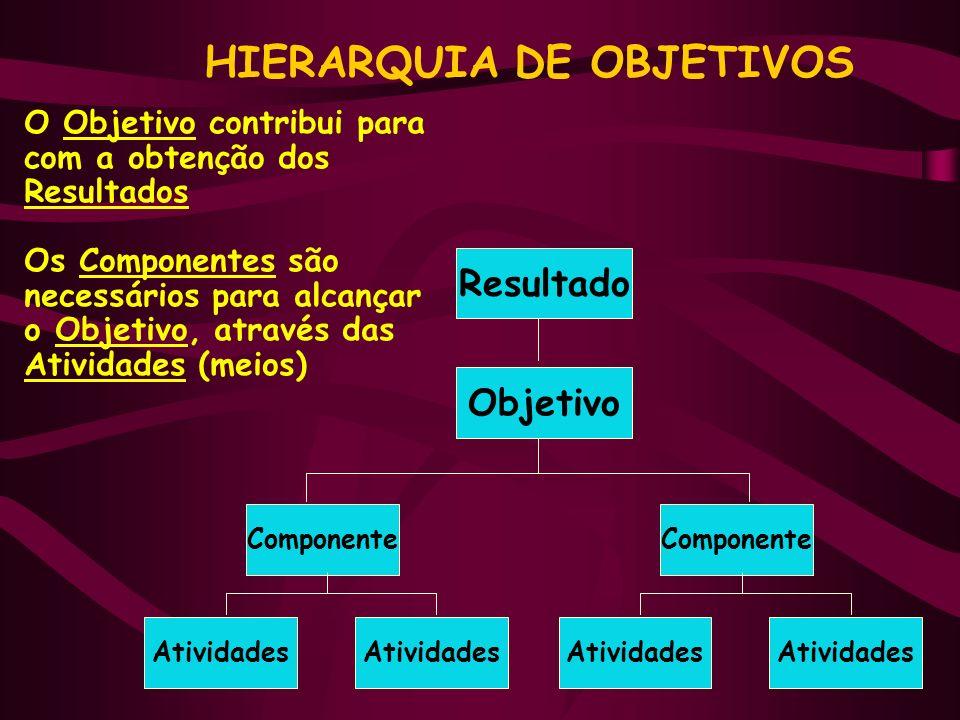 O Objetivo contribui para com a obtenção dos Resultados Os Componentes são necessários para alcançar o Objetivo, através das Atividades (meios) HIERARQUIA DE OBJETIVOS Resultado Objetivo Componente Atividades Componente Atividades