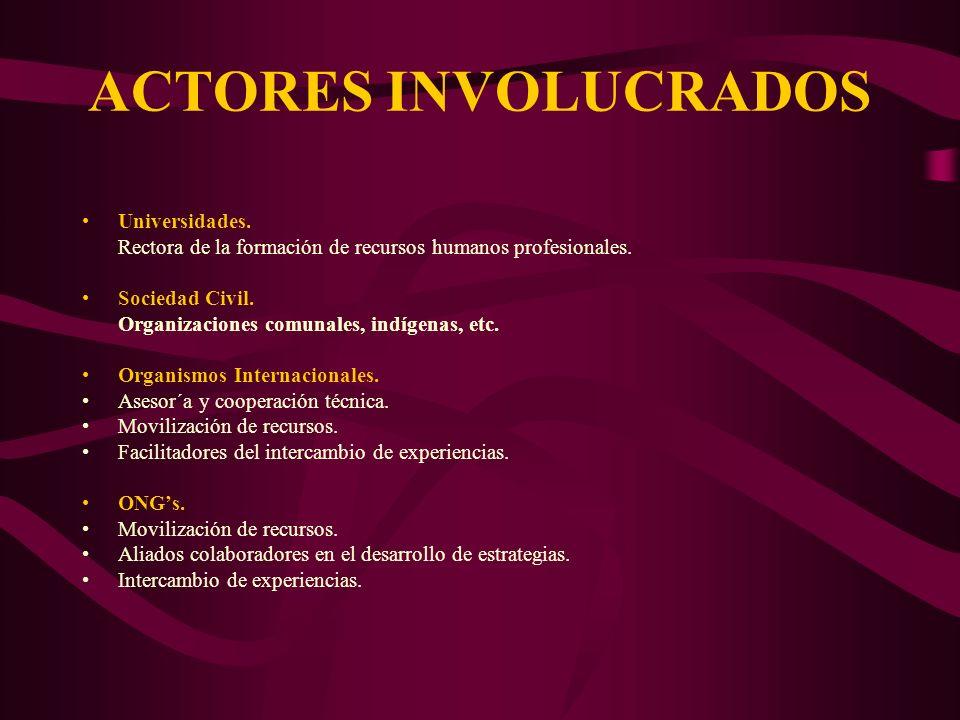 ACTORES INVOLUCRADOS Universidades. Rectora de la formación de recursos humanos profesionales. Sociedad Civil. Organizaciones comunales, indígenas, et