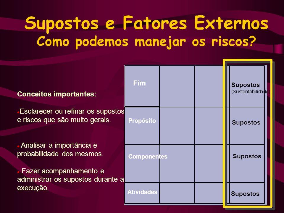 Supostos e Fatores Externos Como podemos manejar os riscos.