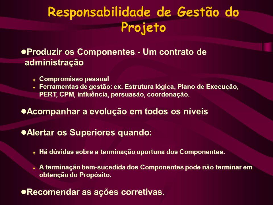 Responsabilidade de Gestão do Projeto Produzir os Componentes - Um contrato de administração Compromisso pessoal Ferramentas de gestão: ex.