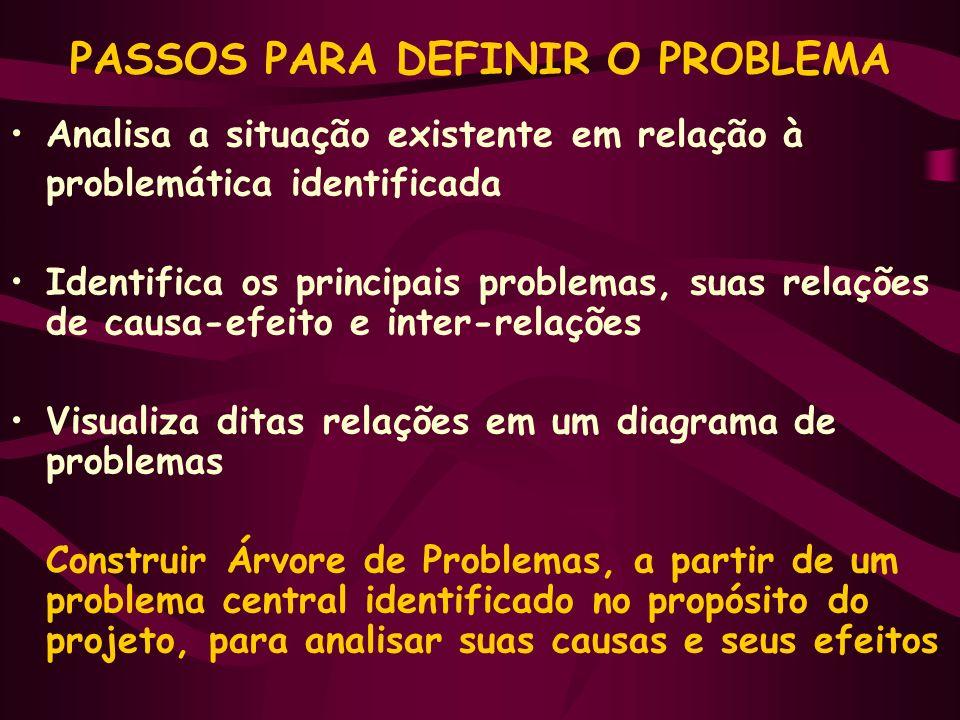 PASSOS PARA DEFINIR O PROBLEMA Analisa a situação existente em relação à problemática identificada Identifica os principais problemas, suas relações d