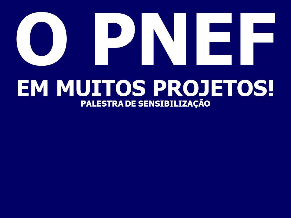 PROGRAMA NACIONAL DE EDUCAÇÃO FISCAL REUNIÃO DE EDUCAÇÃO FISCAL-COINT-COEFI-RFB BRASÍLIA-DF BEM VINDOS!