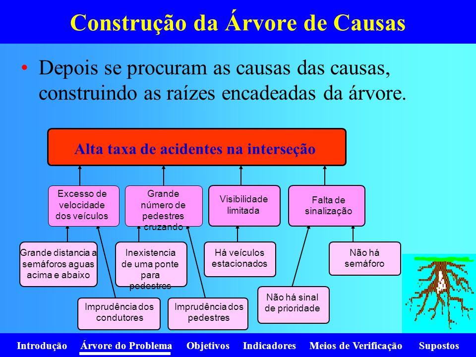 Introdução Árvore do Problema Objetivos Indicadores Meios de Verificação Supostos Depois se procuram as causas das causas, construindo as raízes encad