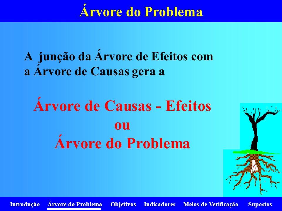 Introdução Árvore do Problema Objetivos Indicadores Meios de Verificação Supostos Árvore do Problema A junção da Árvore de Efeitos com a Árvore de Cau