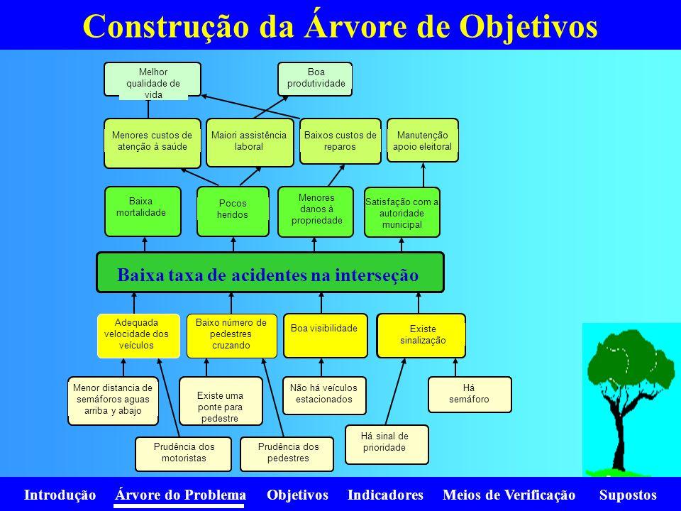 Introdução Árvore do Problema Objetivos Indicadores Meios de Verificação Supostos Construção da Árvore de Objetivos Alta mortalidad Grandes daños a la