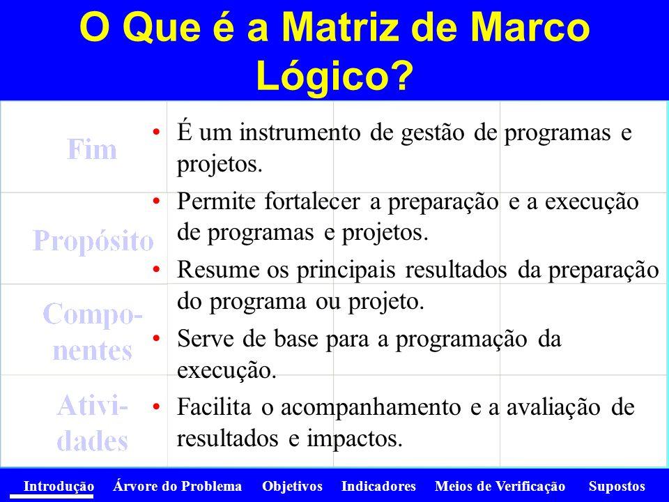 Introdução Árvore do Problema Objetivos Indicadores Meios de Verificação Supostos O que NÃO é a Matriz de Marco Lógico.