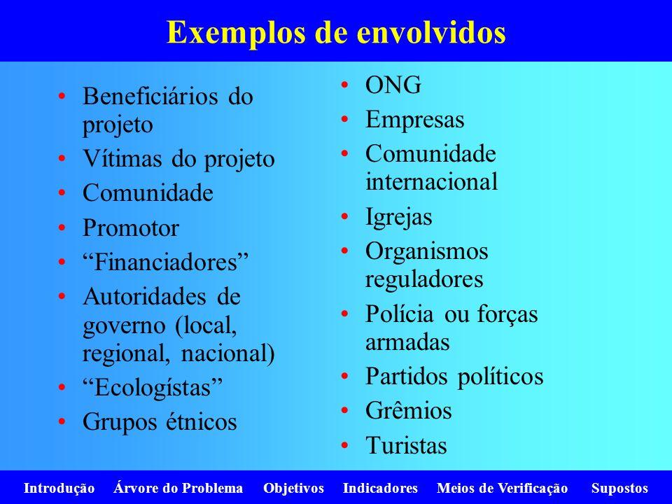 Introdução Árvore do Problema Objetivos Indicadores Meios de Verificação Supostos Exemplos de envolvidos Beneficiários do projeto Vítimas do projeto C