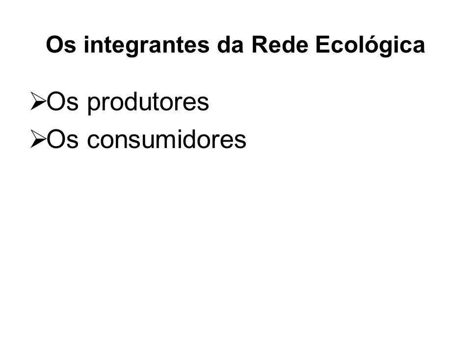 Os integrantes da Rede Ecológica Os produtores Os consumidores