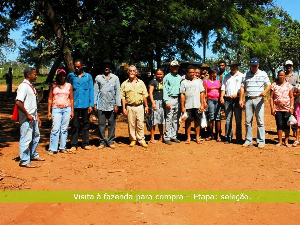 27 Sustentabilidade Visita à fazenda para compra – Etapa: seleção.
