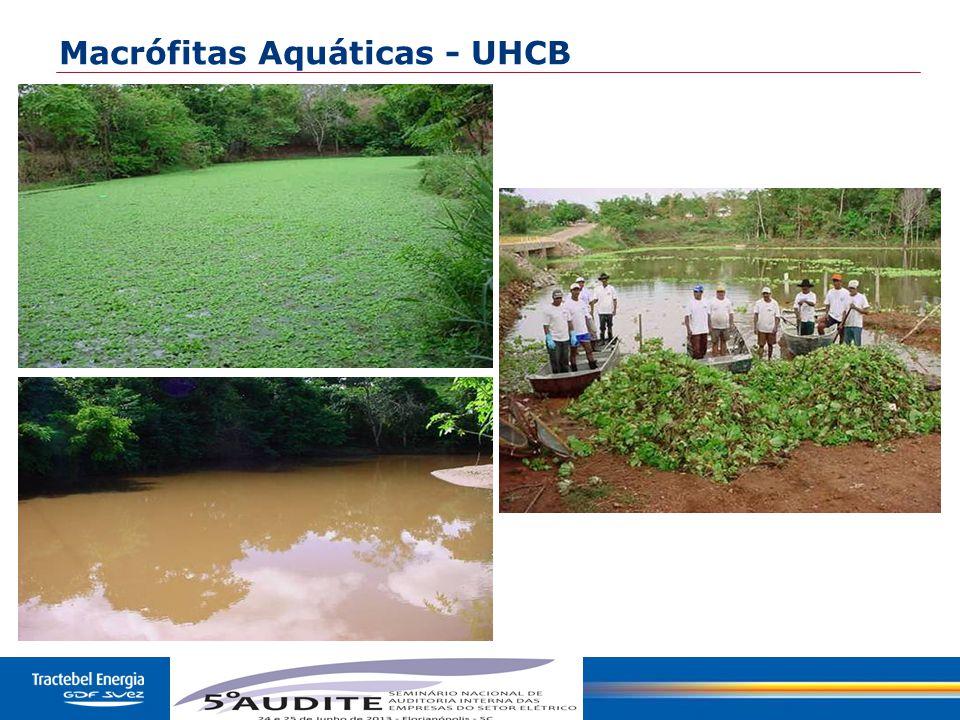 33 Macrófitas Aquáticas - UHCB