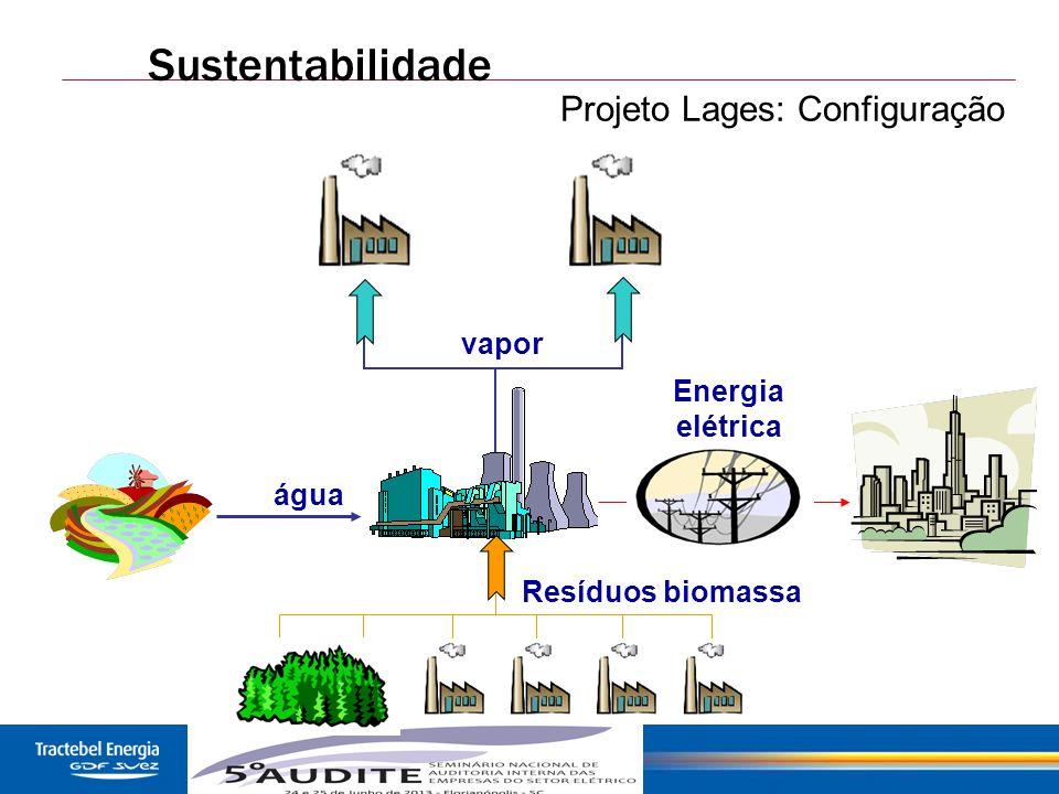 45 Sustentabilidade vapor água Energia elétrica Resíduos biomassa Projeto Lages: Configuração