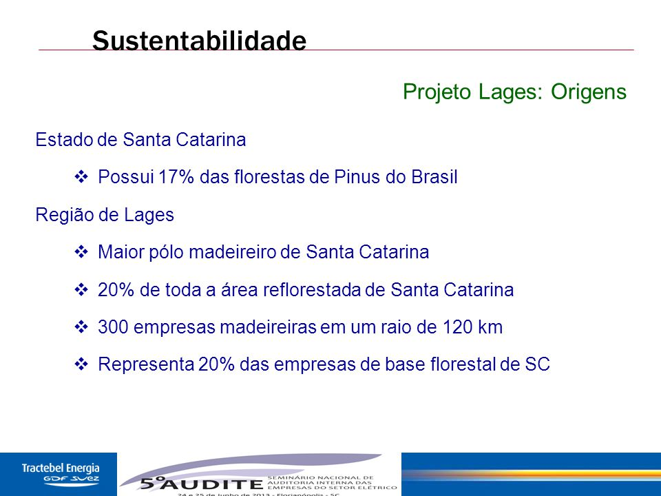 46 Sustentabilidade Projeto Lages: Origens Estado de Santa Catarina  Possui 17% das florestas de Pinus do Brasil Região de Lages  Maior pólo madeire
