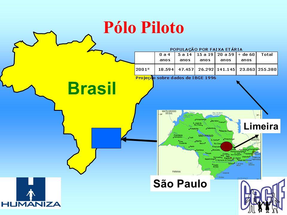 Pólo Piloto Brasil São Paulo Limeira