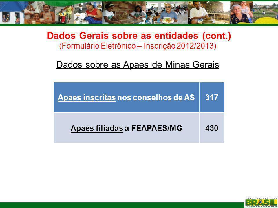 Dados Gerais sobre as entidades (cont.) (Formulário Eletrônico – Inscrição 2012/2013) Serviços prestados pelas Apaes de Minas Gerais Serviço N.