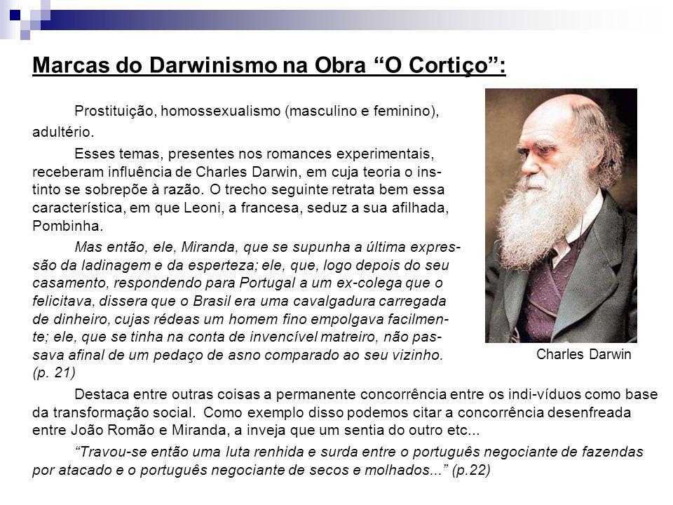 """Marcas do Darwinismo na Obra """"O Cortiço"""": Prostituição, homossexualismo (masculino e feminino), adultério. Esses temas, presentes nos romances experim"""