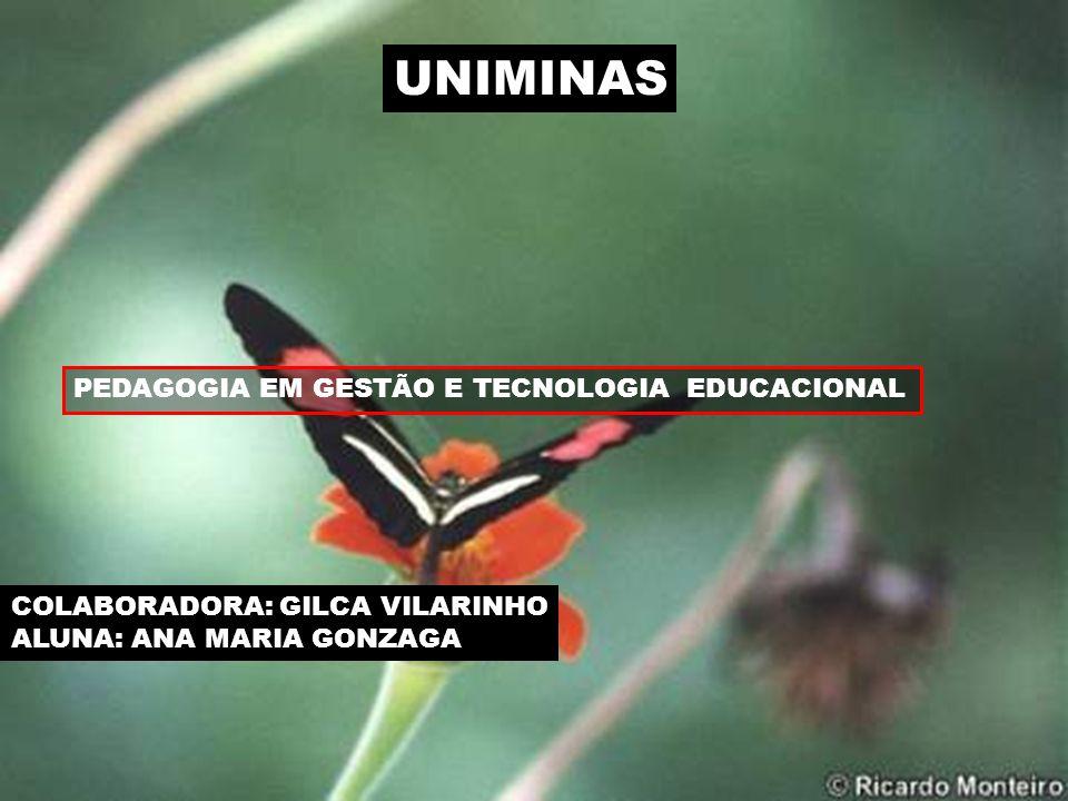 UNIMINAS PEDAGOGIA EM GESTÃO E TECNOLOGIA EDUCACIONAL COLABORADORA: GILCA VILARINHO ALUNA: ANA MARIA GONZAGA