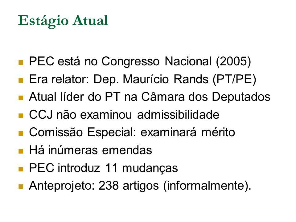 Estágio Atual PEC está no Congresso Nacional (2005) Era relator: Dep. Maurício Rands (PT/PE) Atual líder do PT na Câmara dos Deputados CCJ não examino