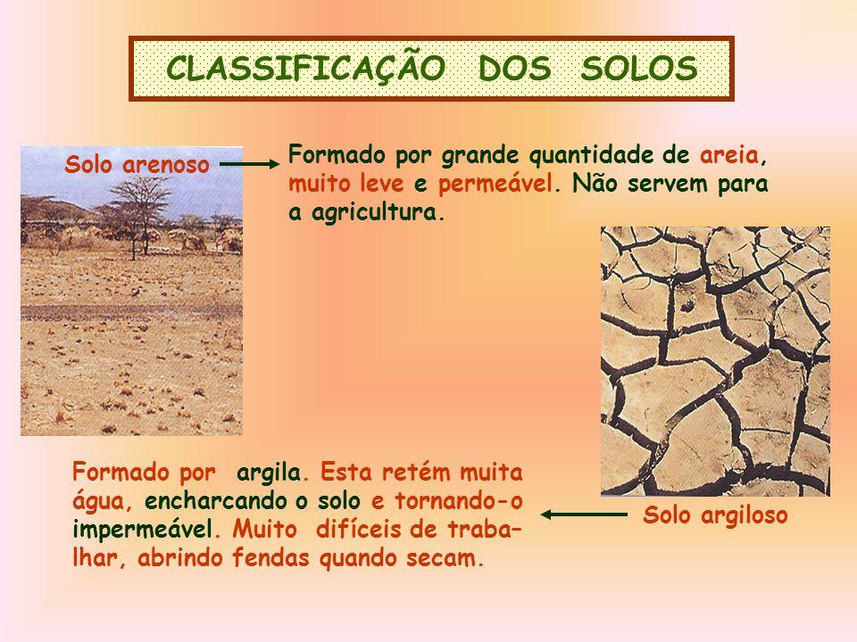 CLASSIFICAÇÃO DOS SOLOS Solo arenoso Formado por grande quantidade de areia, muito leve e permeável.