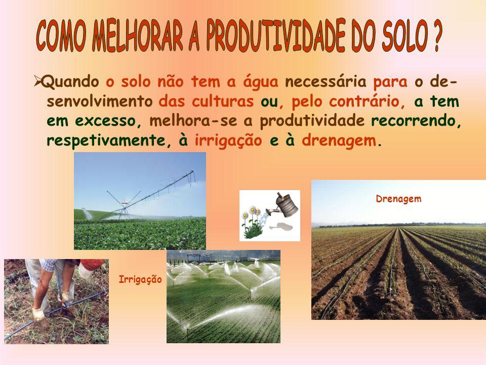  Quando o solo não tem a água necessária para o de- senvolvimento das culturas ou, pelo contrário, a tem em excesso, melhora-se a produtividade recorrendo, respetivamente, à irrigação e à drenagem.