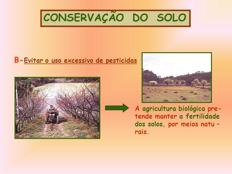 CONSERVAÇÃO DO SOLO B- Evitar o uso excessivo de pesticidas A agricultura biológica pre- tende manter a fertilidade dos solos, por meios natu – rais.