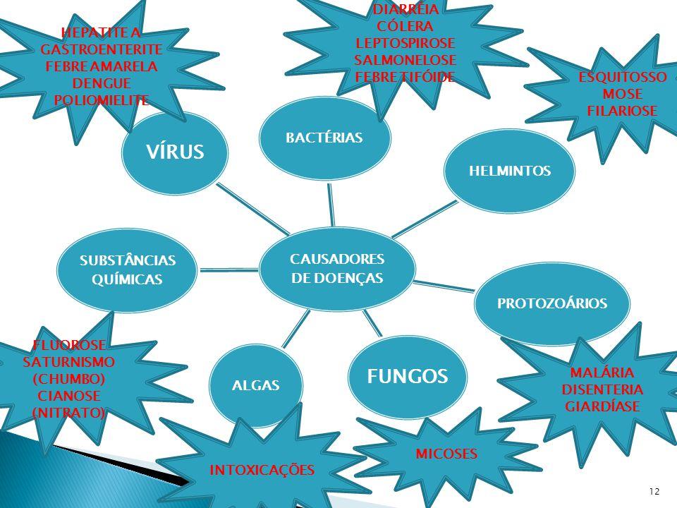 CAUSADORES DE DOENÇAS BACTÉRIASHELMINTOSPROTOZOÁRIOS FUNGOS ALGAS SUBSTÂNCIAS QUÍMICAS VÍRUS INTOXICAÇÕES MICOSES HEPATITE A GASTROENTERITE FEBRE AMARELA DENGUE POLIOMIELITE ESQUITOSSO MOSE FILARIOSE MALÁRIA DISENTERIA GIARDÍASE DIARRÉIA CÓLERA LEPTOSPIROSE SALMONELOSE FEBRE TIFÓIDE FLUOROSE SATURNISMO (CHUMBO) CIANOSE (NITRATO) 12
