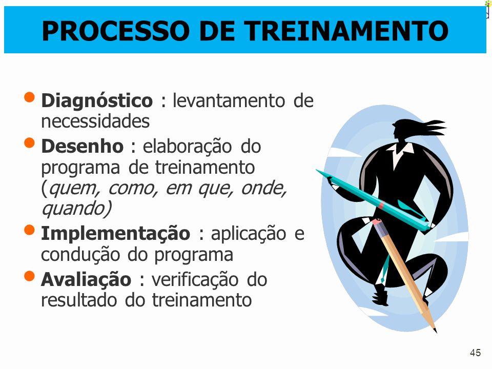45 PROCESSO DE TREINAMENTO Diagnóstico : levantamento de necessidades Desenho : elaboração do programa de treinamento (quem, como, em que, onde, quand