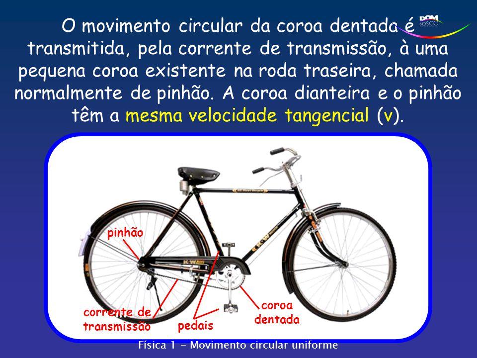 pedais coroa dentada O movimento circular da coroa dentada é transmitida, pela corrente de transmissão, à uma pequena coroa existente na roda traseira