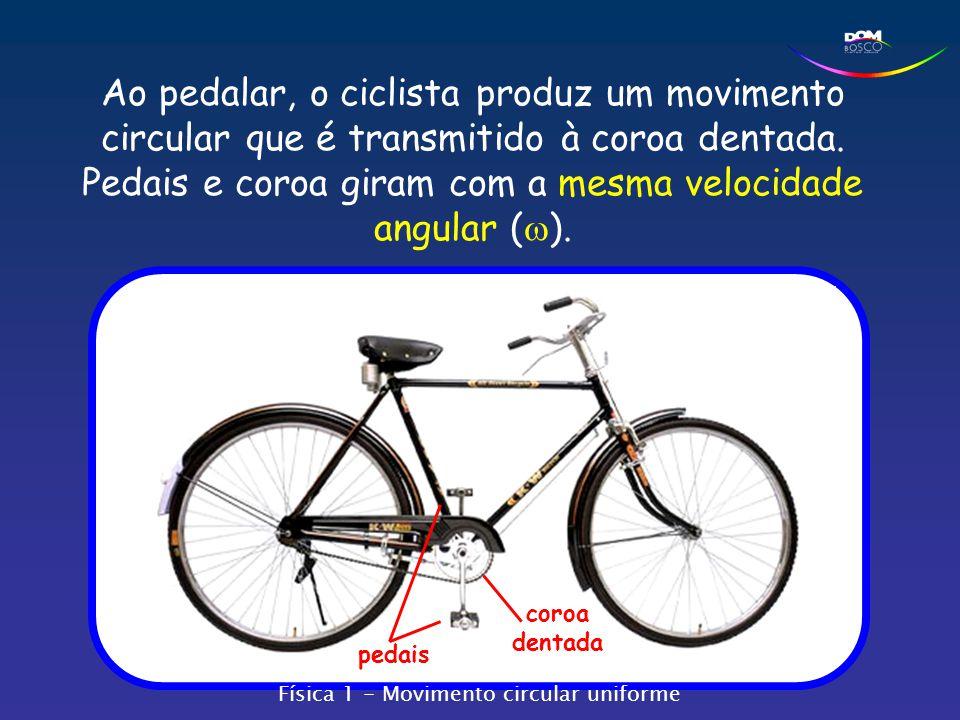 Ao pedalar, o ciclista produz um movimento circular que é transmitido à coroa dentada. Pedais e coroa giram com a mesma velocidade angular (  ). peda