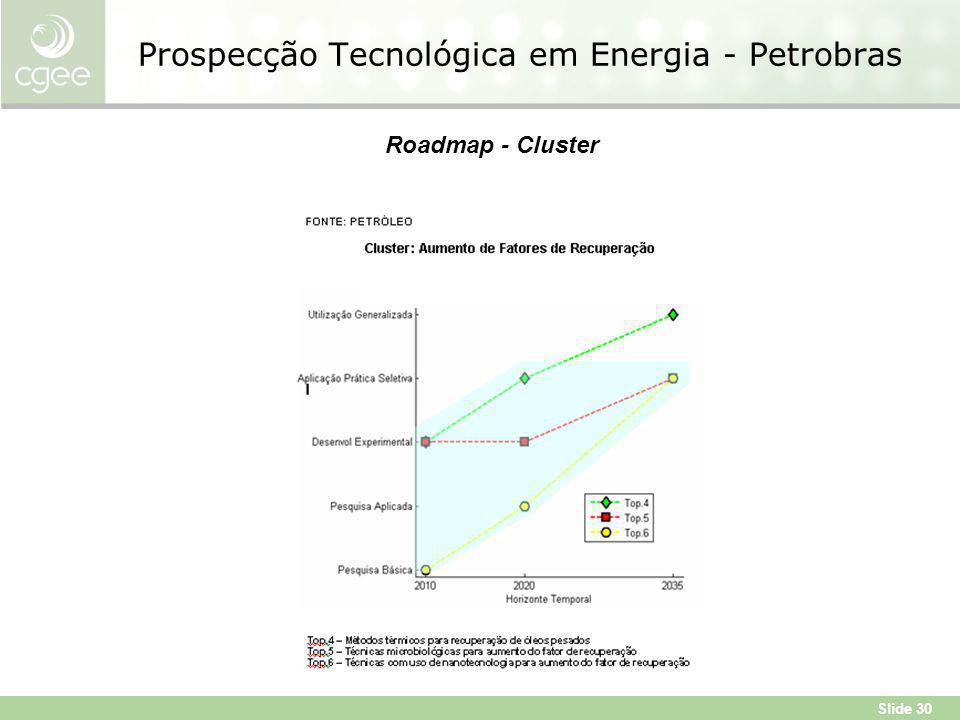Slide 30 Prospecção Tecnológica em Energia - Petrobras Roadmap - Cluster