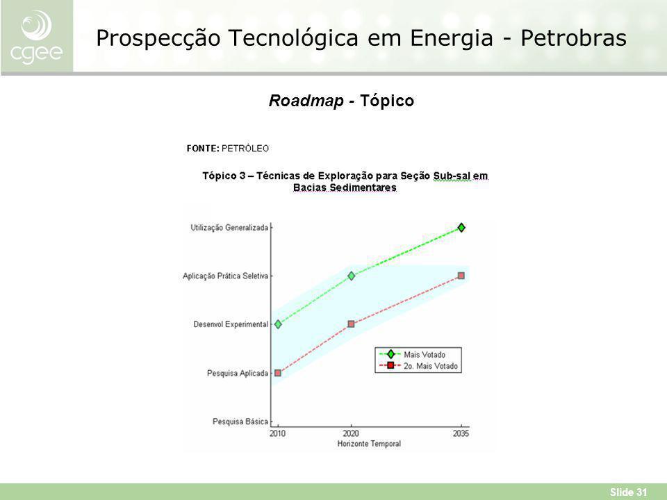 Slide 31 Prospecção Tecnológica em Energia - Petrobras Roadmap - Tópico