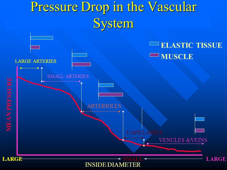 Pressure Drop in the Vascular System LARGE ARTERIES SMALL ARTERIES ARTERIOLES CAPILLARIES VENULES &VEINS MEAN PRESSURE INSIDE DIAMETER SMALLLARGE ELASTIC TISSUE MUSCLE