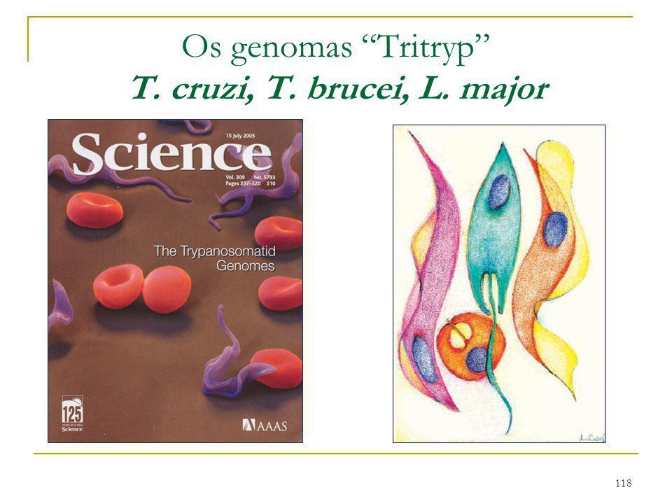 "118 Os genomas ""Tritryp"" T. cruzi, T. brucei, L. major"