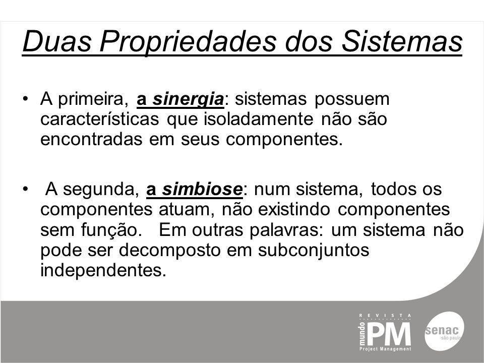 Duas Propriedades dos Sistemas A primeira, a sinergia: sistemas possuem características que isoladamente não são encontradas em seus componentes.