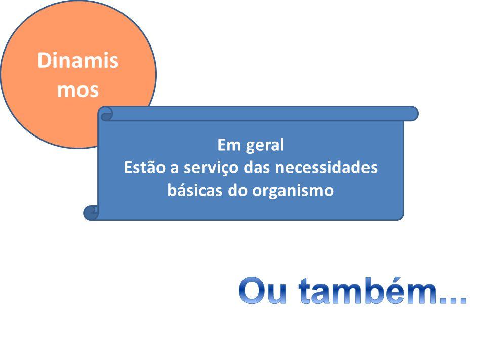 Dinamis mos Em geral Estão a serviço das necessidades básicas do organismo