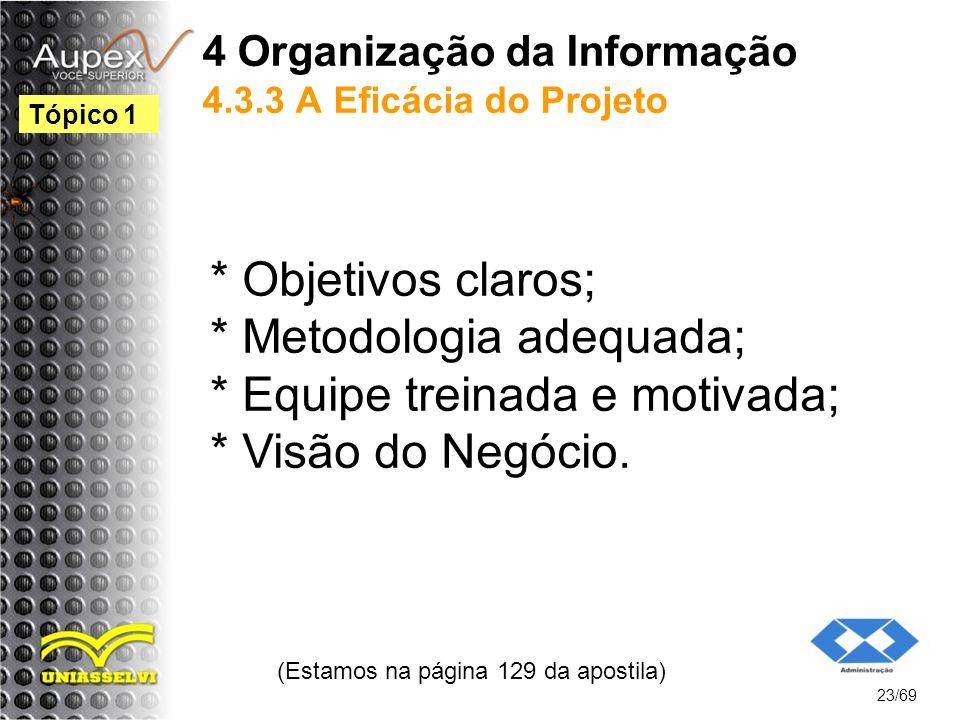 4 Organização da Informação 4.3.3 A Eficácia do Projeto * Objetivos claros; * Metodologia adequada; * Equipe treinada e motivada; * Visão do Negócio.