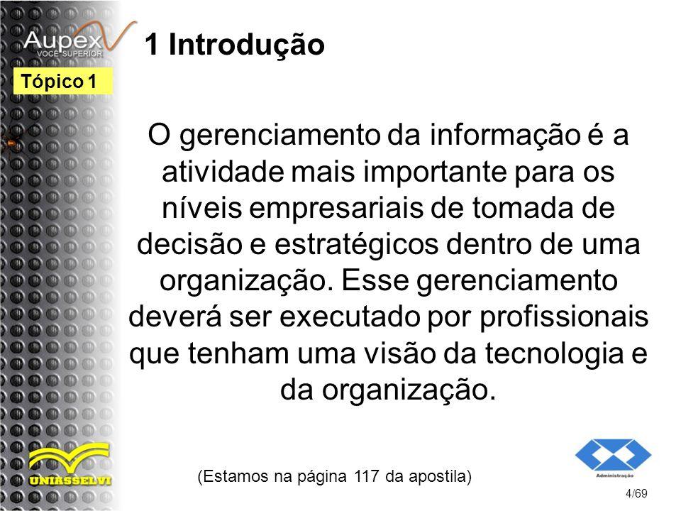 1 Introdução O gerenciamento da informação é a atividade mais importante para os níveis empresariais de tomada de decisão e estratégicos dentro de uma organização.